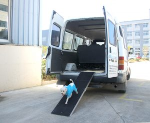 ATV-21 Ramp_WITH DOG